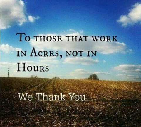 Farming Quotes Captivating The 25 Best Farm Life Quotes Ideas On Pinterest  Farm Quotes