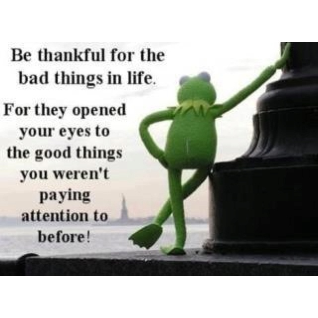 39 Best Muppet Quotes Lol Images On Pinterest: 14 Best Kermit The Frog Quotes Images On Pinterest
