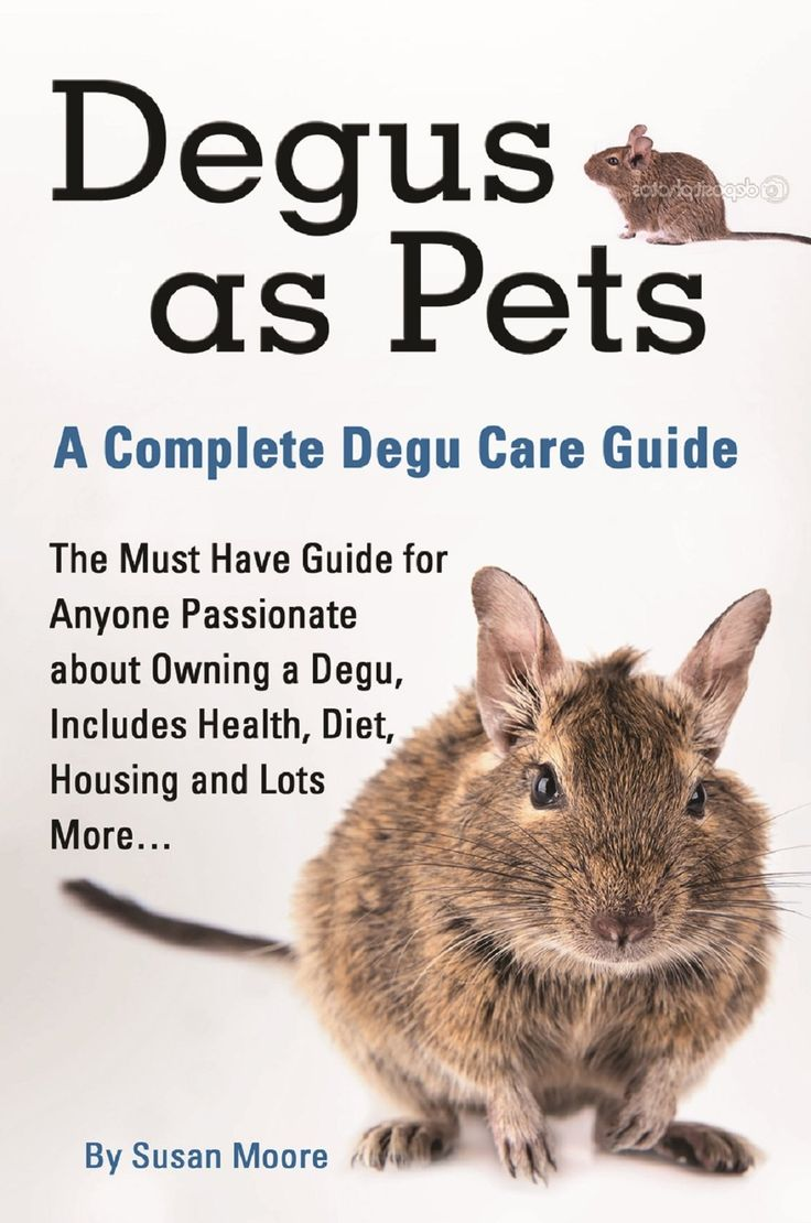 Degus as Pets A Complete Degu Care Guide: The Must Have Guide for Anyone Passionate about Owning a Degu, Includes Health, Diet, Housing and Lots More...:Amazon.co.uk:Kindle Store