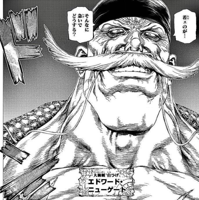 Pin By Mr Pouki On Ref Design Graphic Projet4e One Piece Ace One Piece Manga Boichi Art