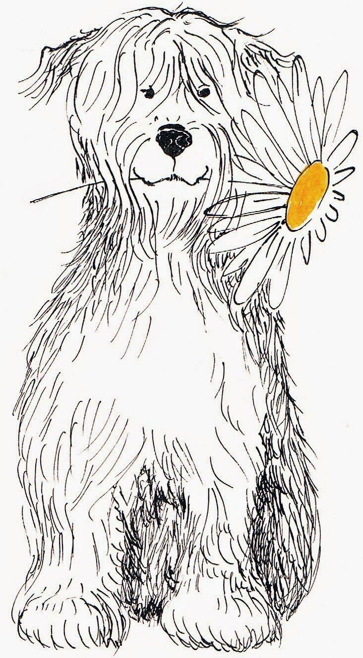 39 best Malvorlagen images on Pinterest | Draw animals, Drawing for ...