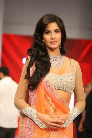 Gorgeous sarees 2013 by Neeta Lulla