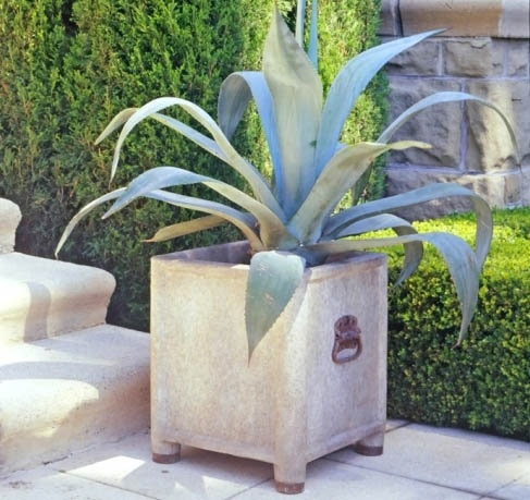 Affordable Cast Stone Wzinc Detail Garden With French Garden Planters