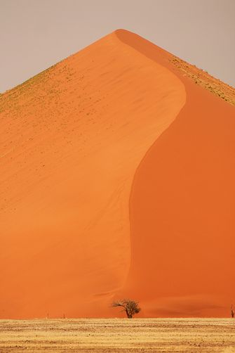 A giant sand dune in Namibia by Megan Laws