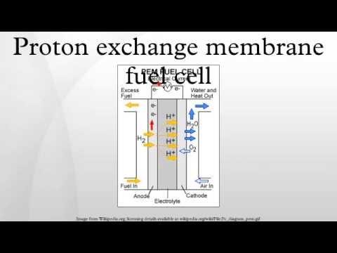 Proton Exchange Membrane ( PEM ) fuel cell & CFD - YouTube