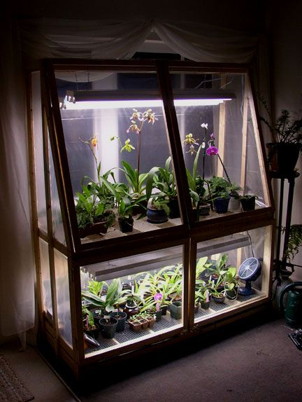 Broke college student = DIY Wardian Case - Orchid Forum Orchid Care
