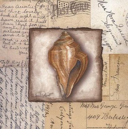 Conch Shell by Annie Lapoint art print