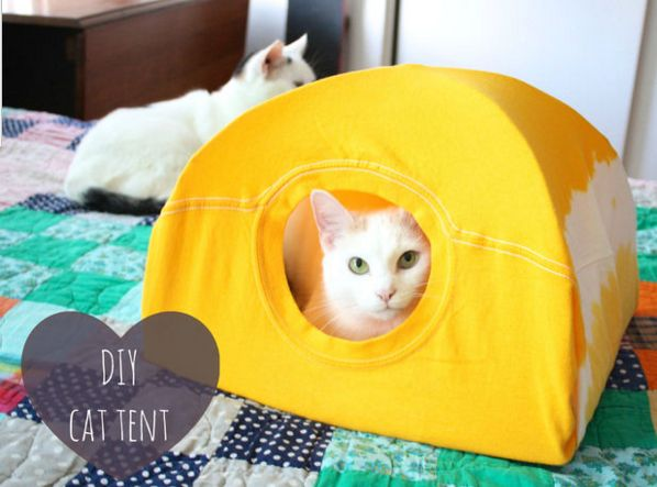 If you're looking for a fun and easy project that will make your cat especially happy, try this DIY cat tent.  All you need is an old t-shirt and a few supplies that you likely have around the house and you've got the perfect little getaway for your furry friend.