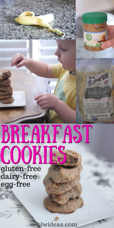 Breakfast Cookies (Allergy-Friendly) - Baby Led Weaning Ideas