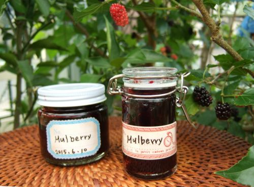 自宅の庭で採れた桑の実でジャムを作りました。桑の実はとても美味しくて、栄養価が高いベリーなんですよ!桑の実ジャムの作り方を紹介しています。 I made jam with a mulberry produced in a home garden. The mulberry is delicious, and nutritive value is a high fruit. I introduce how to make mulberry jam.  http://pastry.uzutama.net/2015/0705/070048/