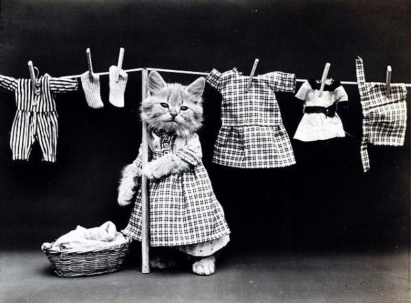 Usuwanie plam z ubrań – Domowe sposoby