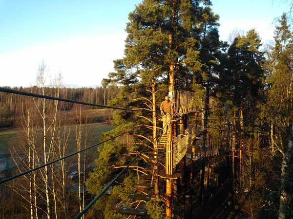 Seikkailupuisto Huippu, musta rata, Huippu tree top Adventure, black course, Hochseilgarten Huippu, schwarze Route