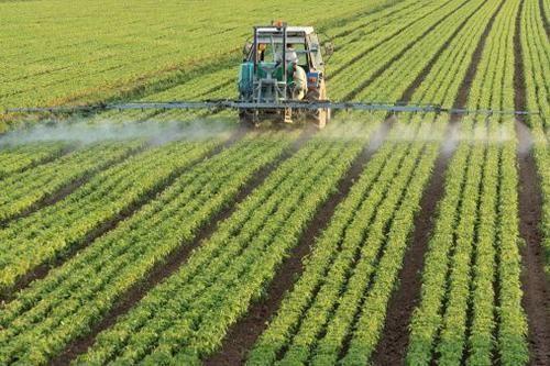 Cronaca: #Pesticidi gli #alimenti per bambini e vegetariani sono sicuri? (link: http://ift.tt/28IEaf9 )