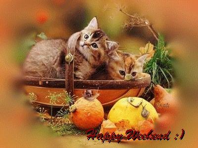 Happy Weekend tmate
