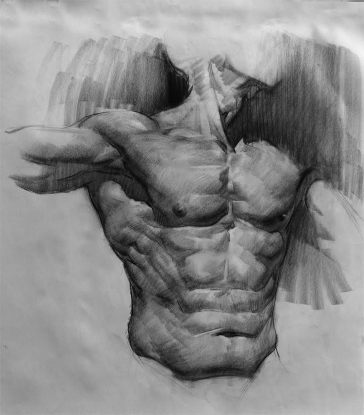 E. M. Gist Illustration/ Dead of the Day: Anatomy Studies from Life