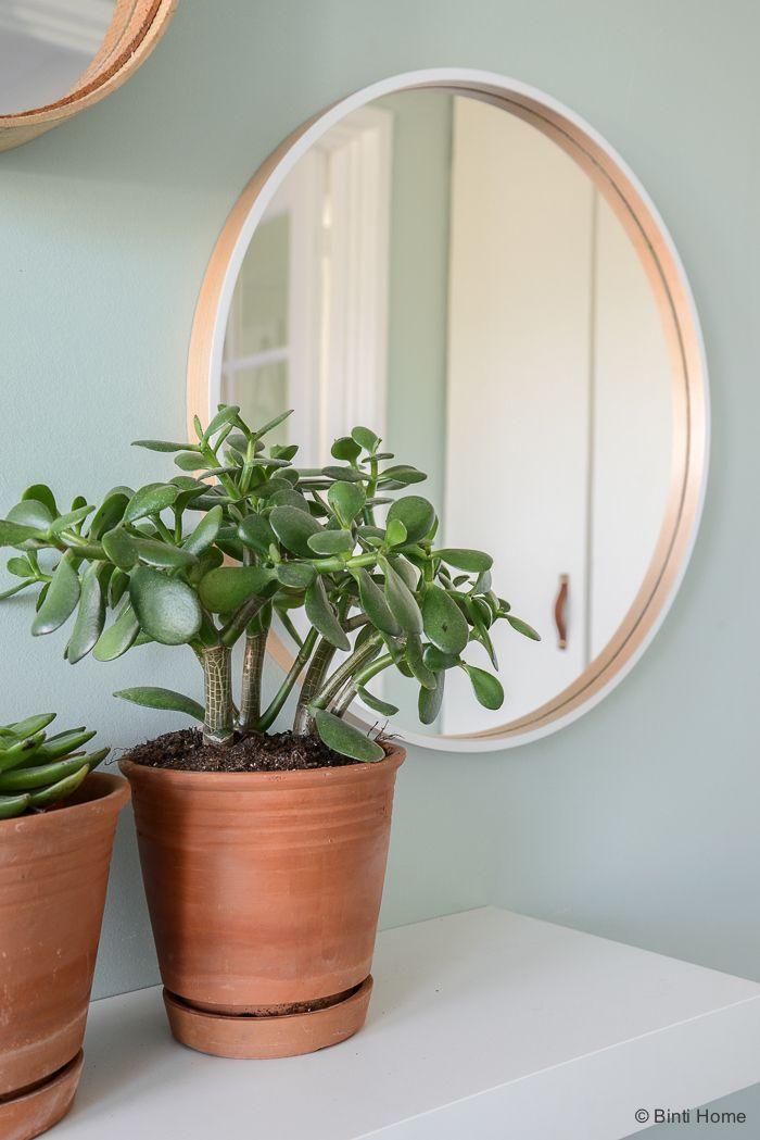 Un intérieur charmant et végétalisé rempli d'idées déco à piquer