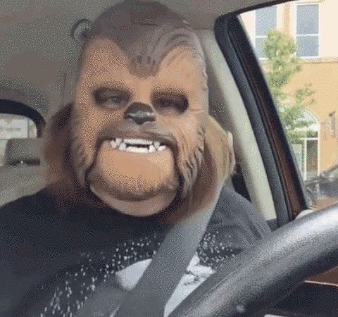 """OH, I'M SUCH A HAPPY CHEWBACCA!"" 