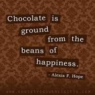 Image result for chocolate quotes