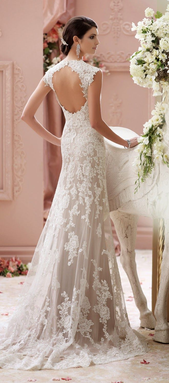 David's Bridal Backless Wedding Dresses