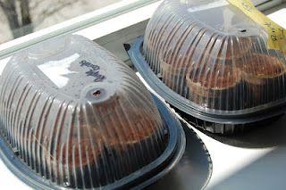 Repurposed rotisserie chicken containers = windowsill greenhouses