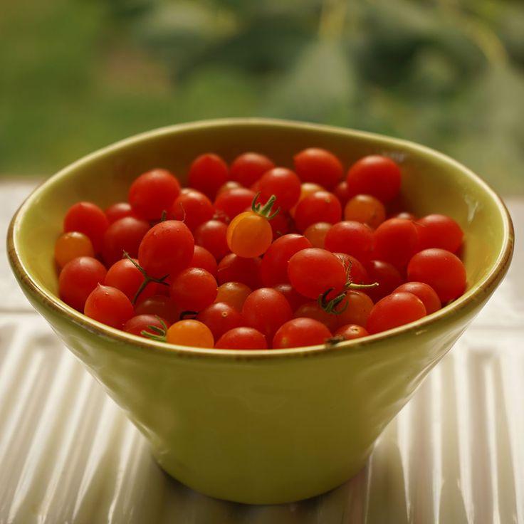 Vinbärstomater - söta och goda!