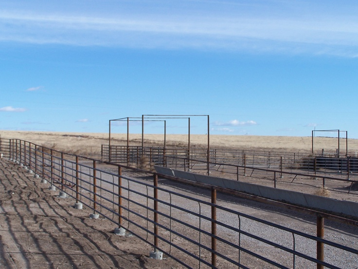 Continuous Fence & Pipe Pens