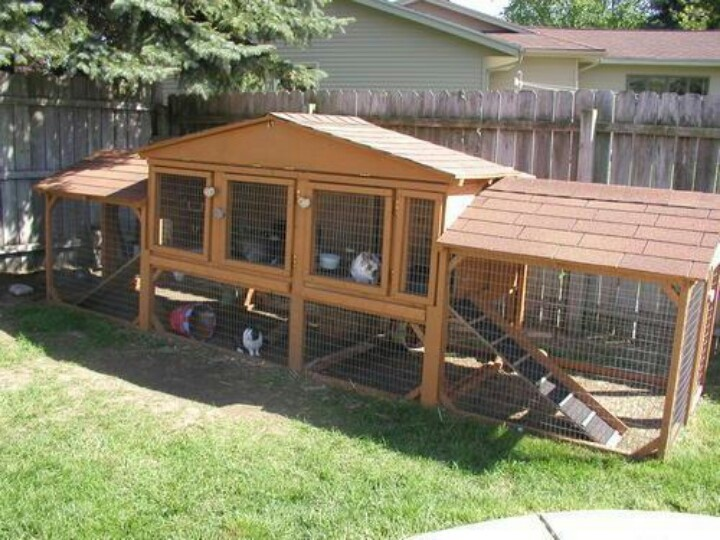 Rabbit hutch or rabbit palace silly rabbit for Amazing rabbit cages