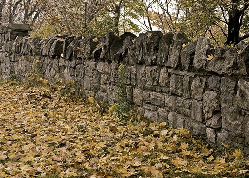 Stone wall with fall leaves in the park on Mountain brow in Hamilton, Ontario