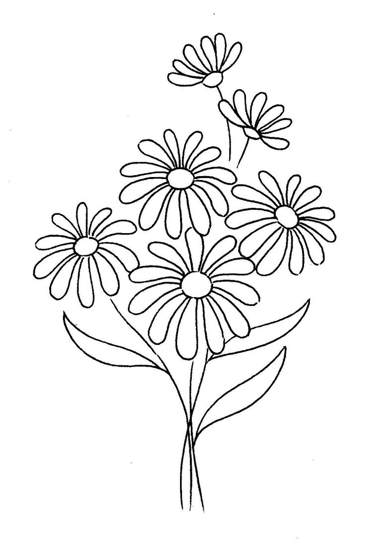 Flower In Line Drawing : Best flower images on pinterest