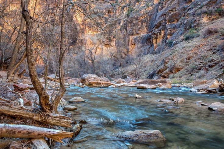 Exploring Zion's beauty by Mandy Monroe