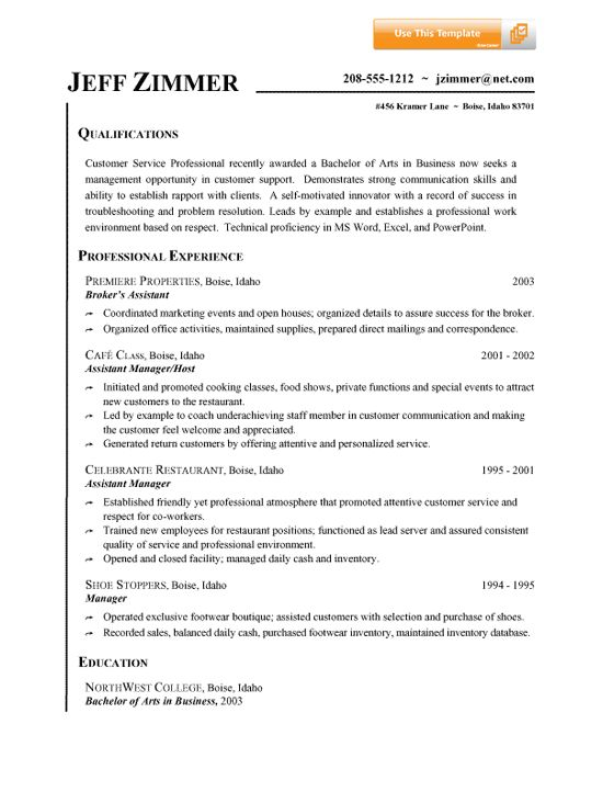 Job Resume Summary Example  Template