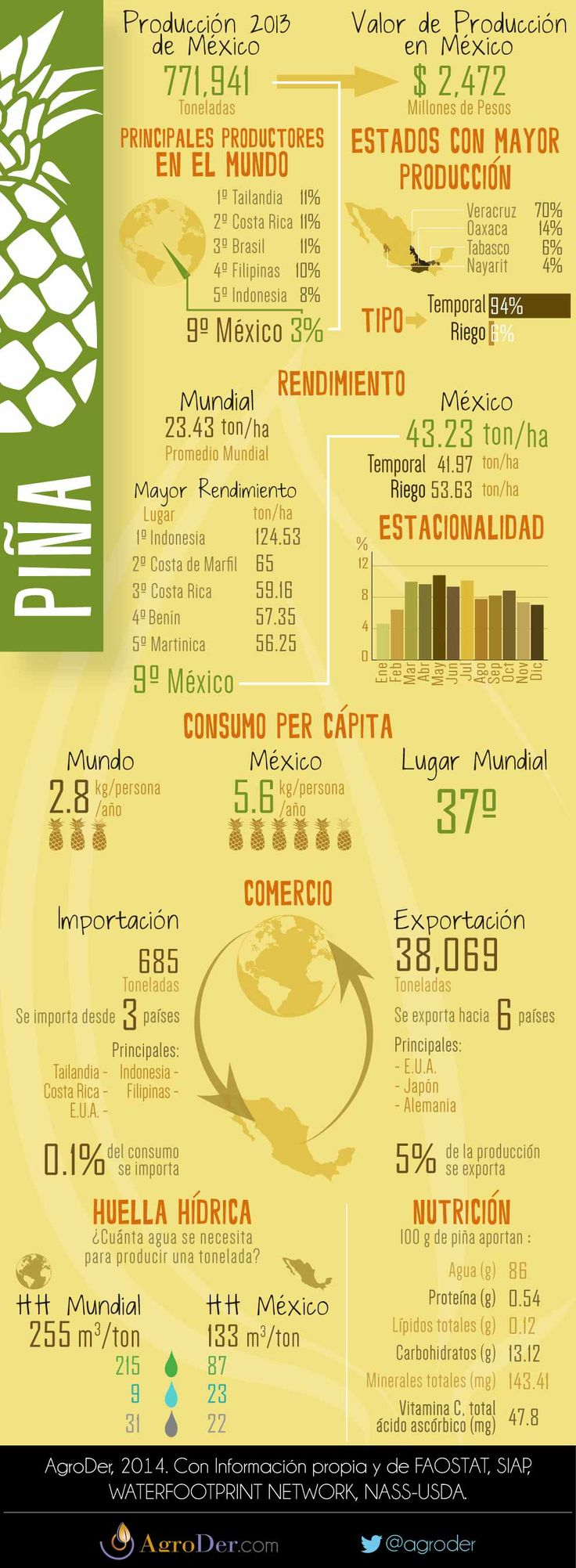 Infografía - Piña en México, 2013.