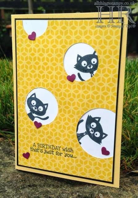 Stamp' Up! ... handmade birthday card from All Things Stampy: You Little Furball - peeping toms? ... too cute!