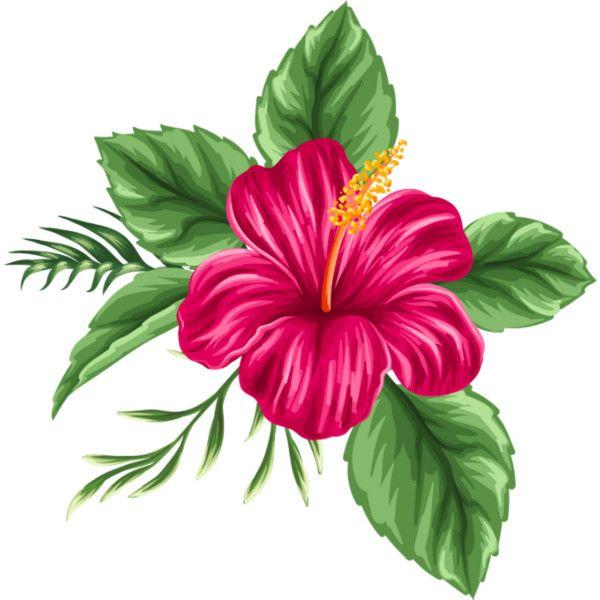 Red Flower Png Clipart Image Clipart De Flores Flores Pintadas Arte Flor