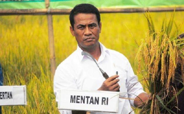 Mentan: Persiapan Benih Sudah 90 Persen Tinggal Tunggu Hujan : Menteri Pertanian Amran Sulaiman mendorong kesiapan benih seperti jagung dan padi untuk stok dalam rangka mewujudkan swasembada pangan dan program tanam sejuta hektare