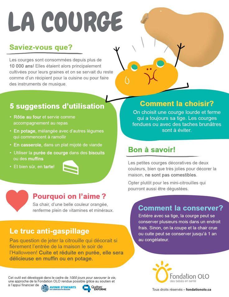 Infographie sur la courge Infographies d\u0027aliments Pinterest