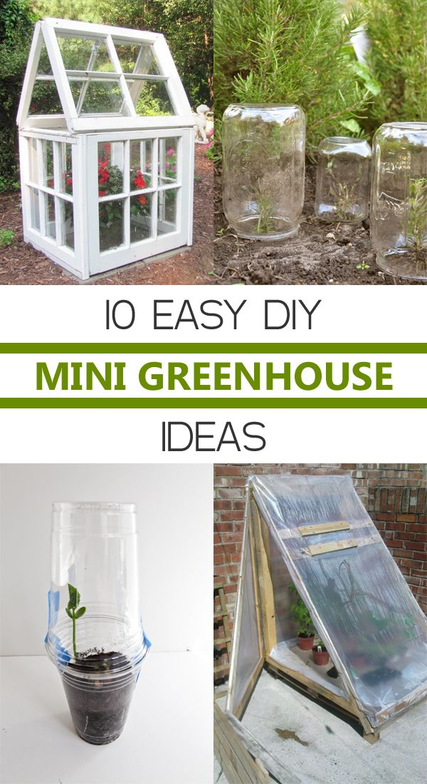 10 Easy DIY Mini Greenhouse Ideas