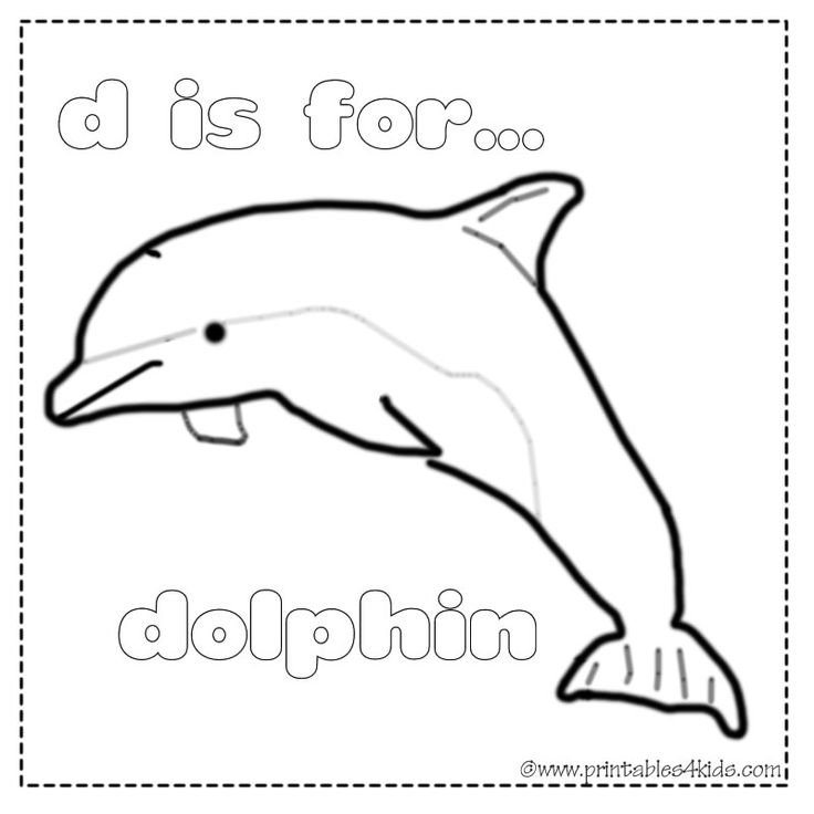 hard dolphin coloring pages - photo#36