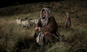 Shepherds Learn of the Birth of Christ - Shepherds Learn of the Birth of Christ - Luke 2