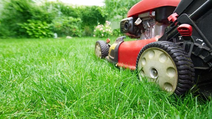 We can assist with your lawn care through weed and pest control, top dressing, fertilizing, aeration, coring and repair. With our services, you and your lawn and garden are in safe hands and also contact us today.