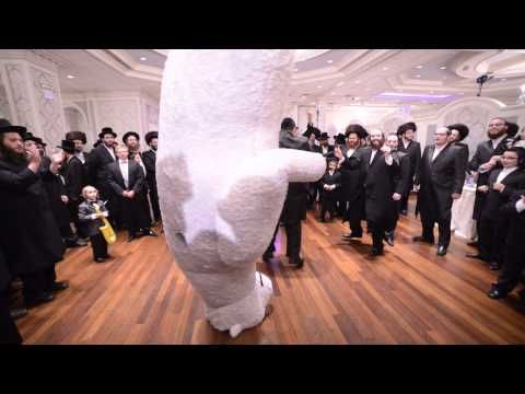 polar bear shows up chasidic jewish wedding israel