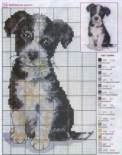 cross-stitch puppy <3 cuccioli