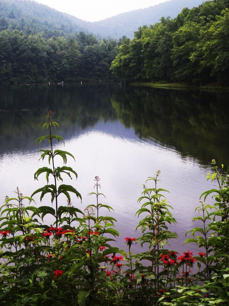 Lake Winfield Scott Suches Ga