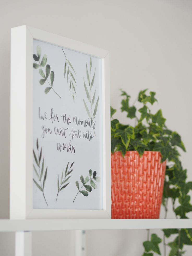 Ivy plant with print