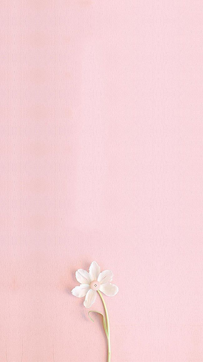 live jasmine sampopankki mobiili