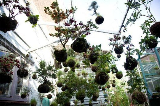 Suspended String Gardens
