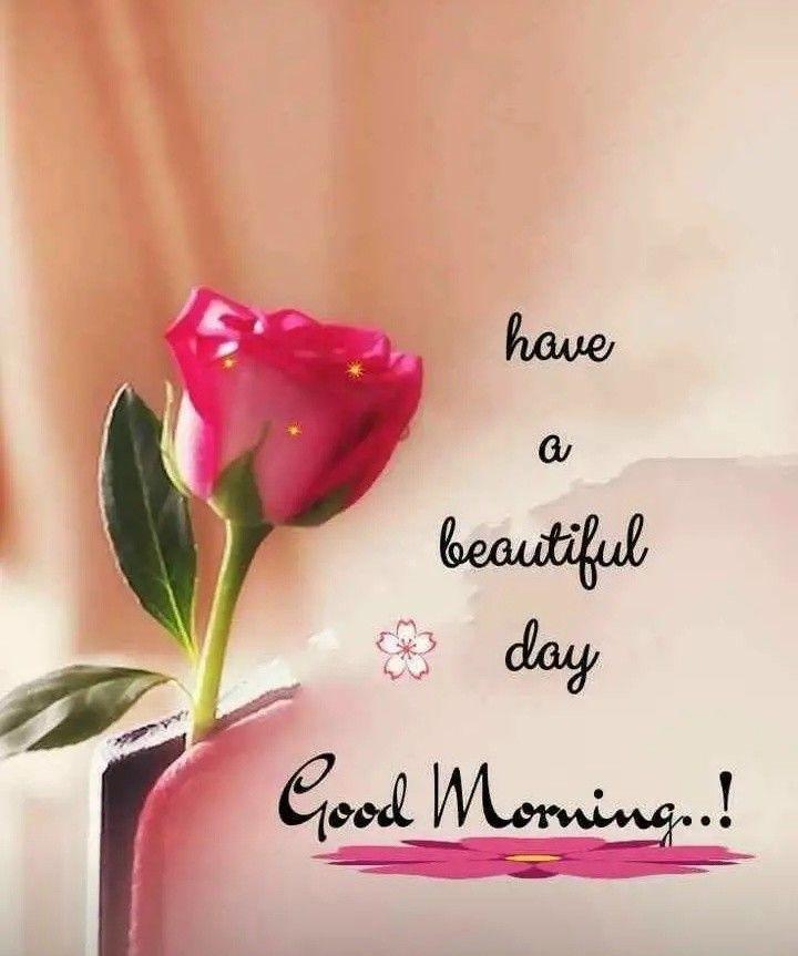 Pin By Gloria Serna On Good Morning Good Morning Quotes Good Morning Love Good Morning Cards