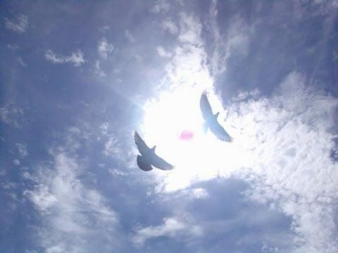 Медитация с Секретом для Релаксации, Оздоровления и наполнения Энергией!  - http://www.shinylife.ru/meditaciya-s-sekretom-dlya-relaksacii-ozdorovleniya-i-napolneniya-ehnergiej/
