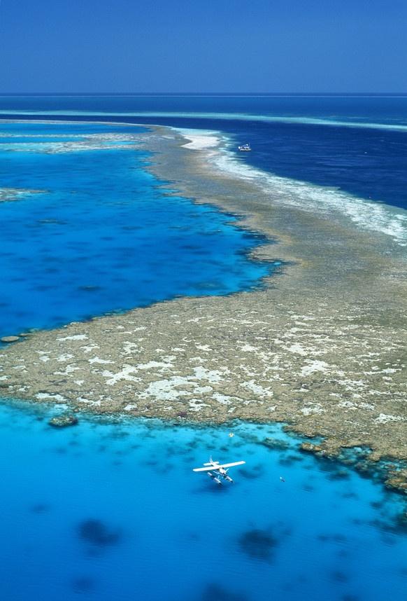 LA GRAN BARRERA DE CORAL A lo largo de la costa noroccidental de Australia se halla el conjunto de arrecifes coralíferos más extenso del mundo. Con sus 400 tipos de coral, sus 1.500 especies de peces y sus 4.000 variedades moluscos, la Gran Barrera ofrece un espectáculo de variedad y belleza extraordinarias, así como un gran interés científico. Además, este sitio es el hábitat de algunas especies en peligro de extinción como el dugongo y la gran tortuga verde. Source: UNESCO