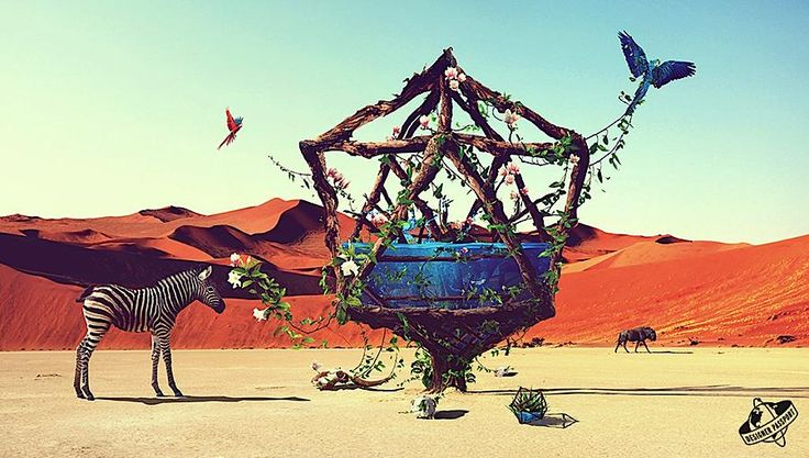 Case Study: 3D Oasis by Justin Maller